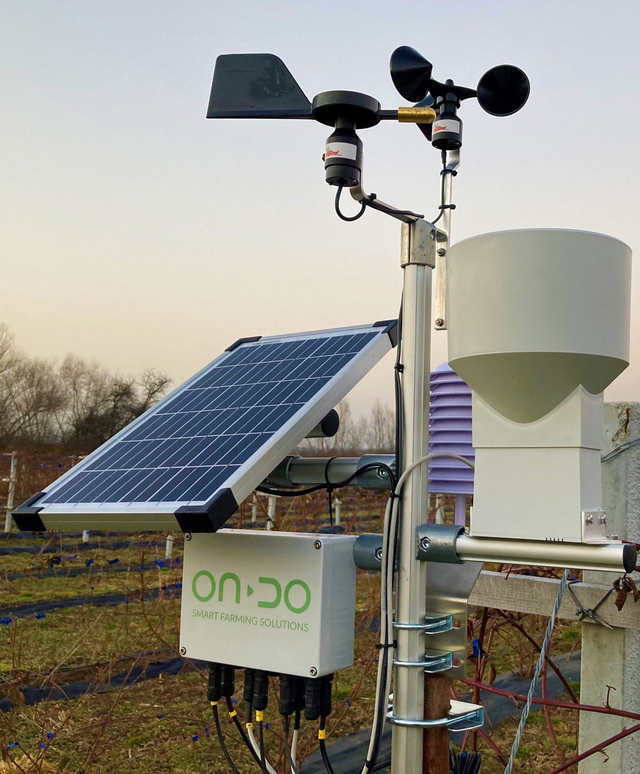 Precision irrigation thanks to ONDO Weather - ONDO agricultural weather station